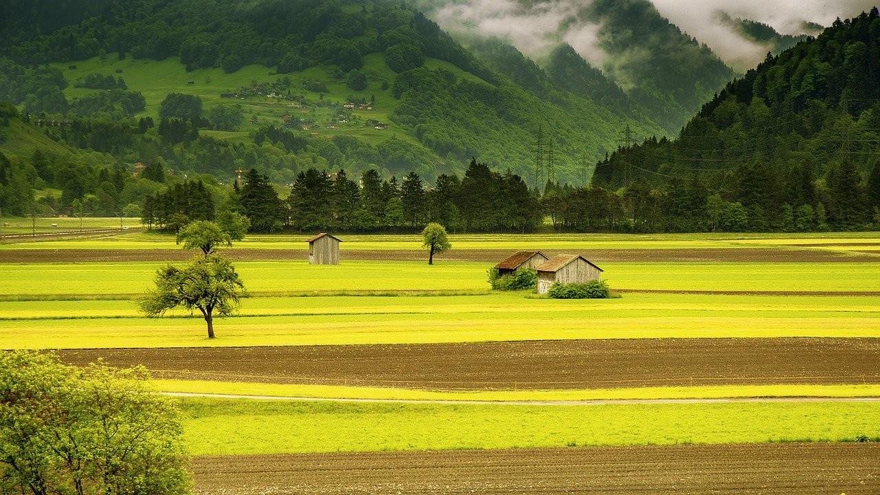 Feld in Graubünden