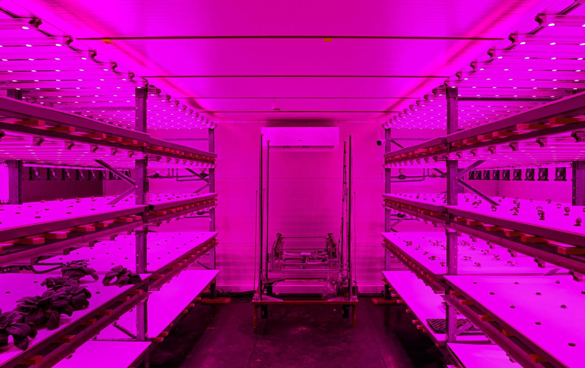 Vertical Farm von Growcer im Smart City Lab Basel