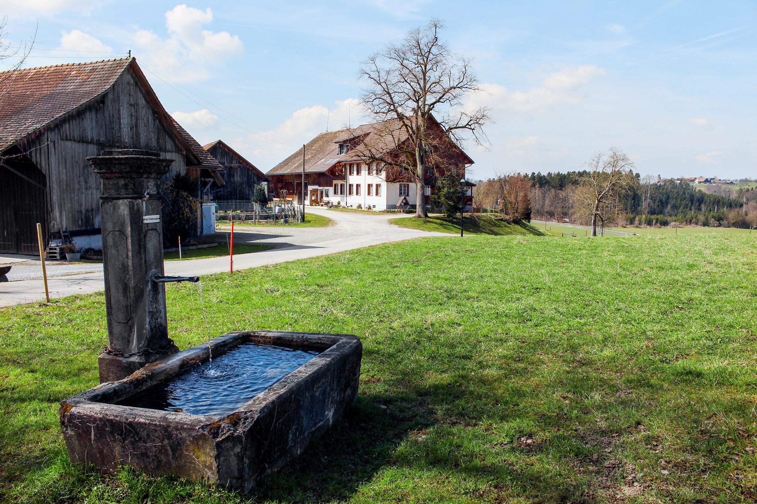 Weiler Chöll in Stettfurt TG