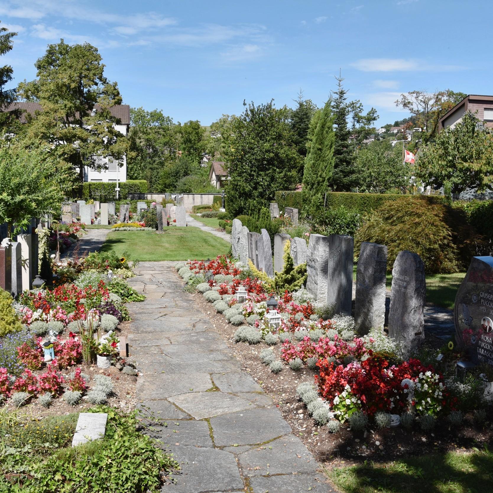 Friedhof Rosenberg in Winterthur 1