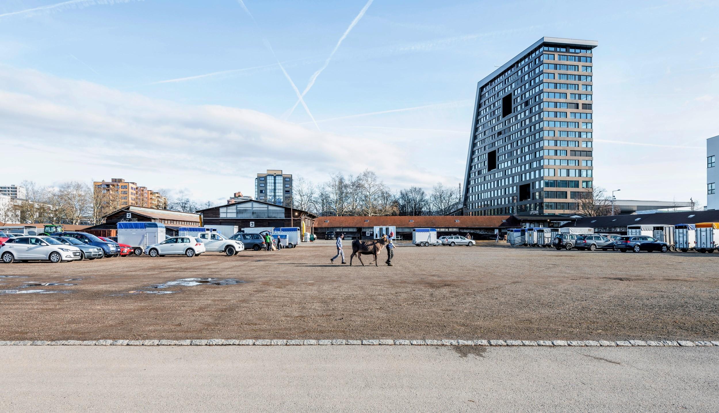 Stierenmarktareal in Zug
