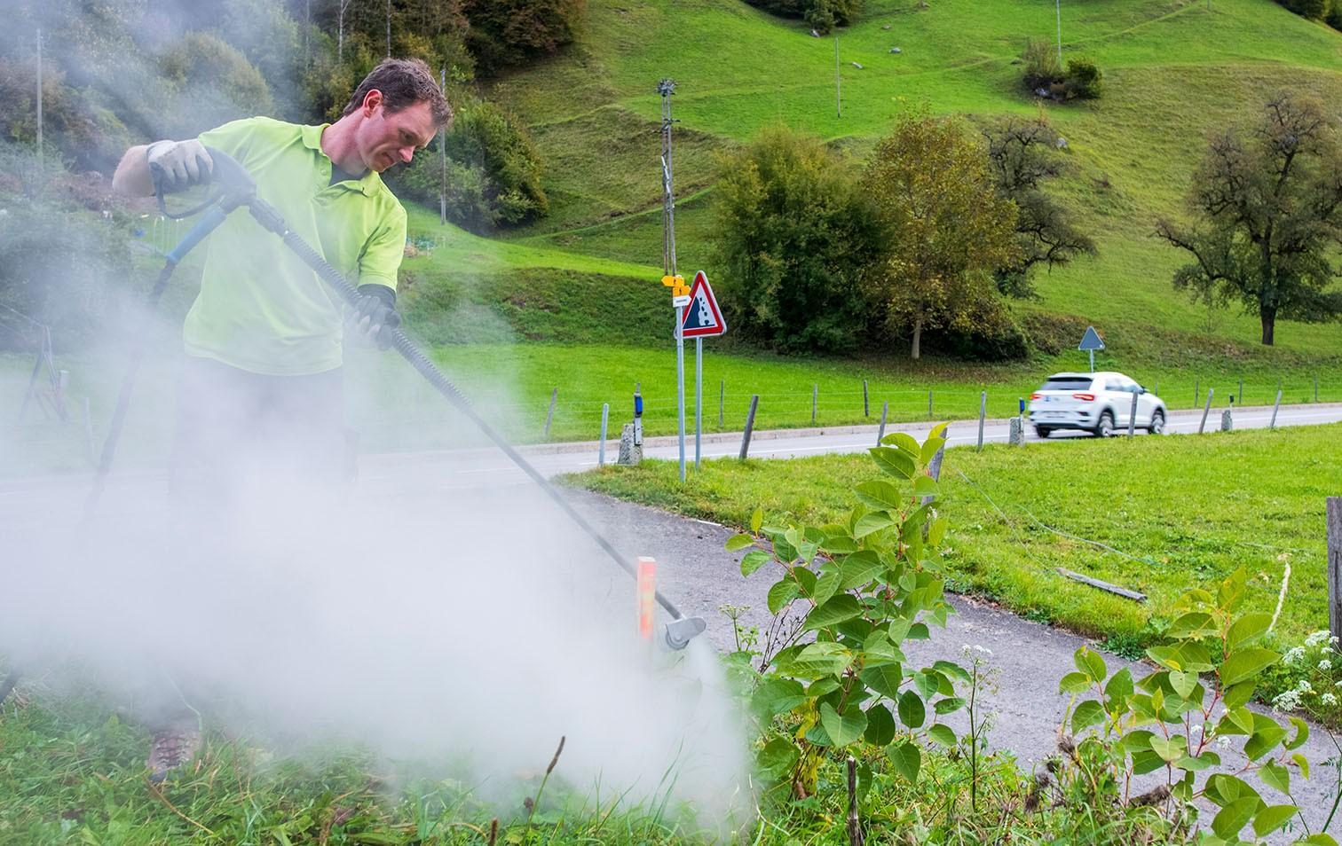 Neophyten-Bekämpfung im Kanton Uri mit heissem Wasser
