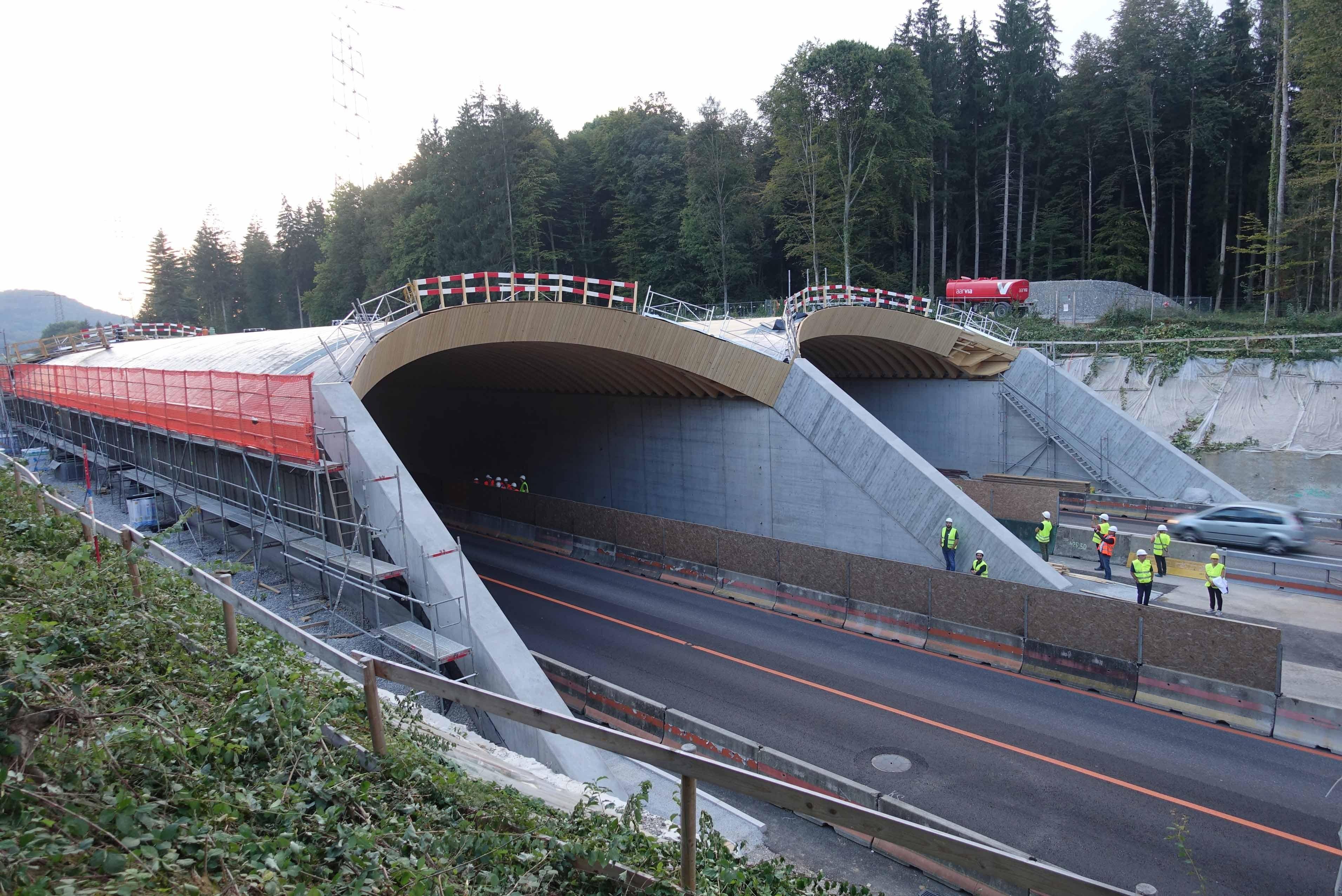 Wildtierbrücken Suhr Autobahn A1