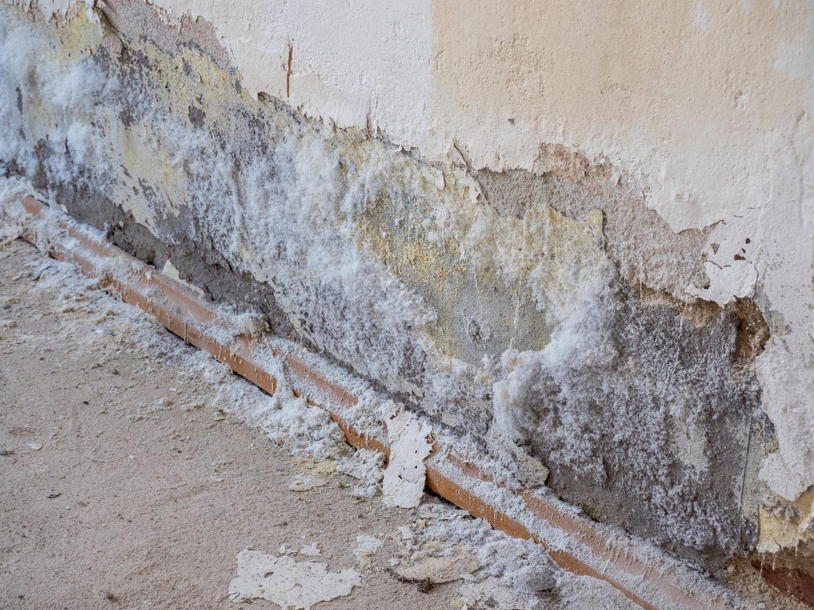 Versalzene feuchte Wand