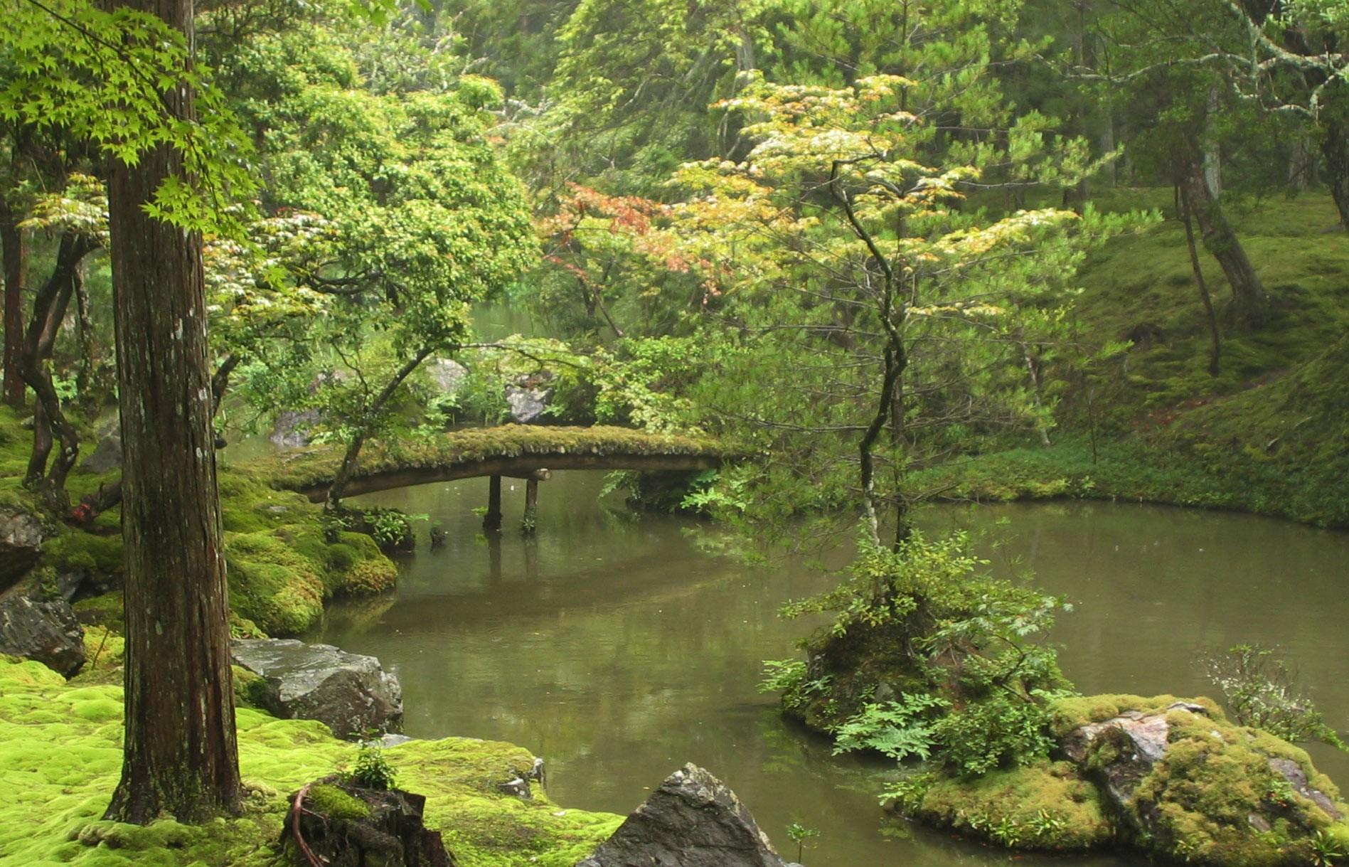 Moosgarten beim Saihō-ji-Tempel