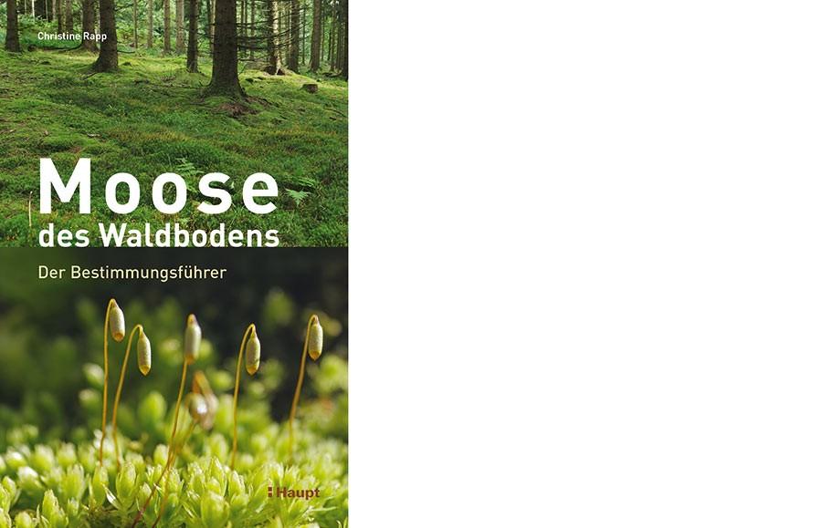 """Moose des Waldbodens"""