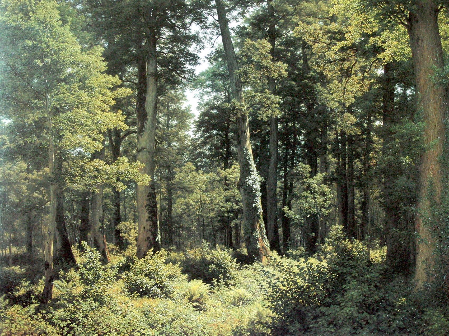 """""""Eichenwald"""" von Robert Zünd um 1882."""