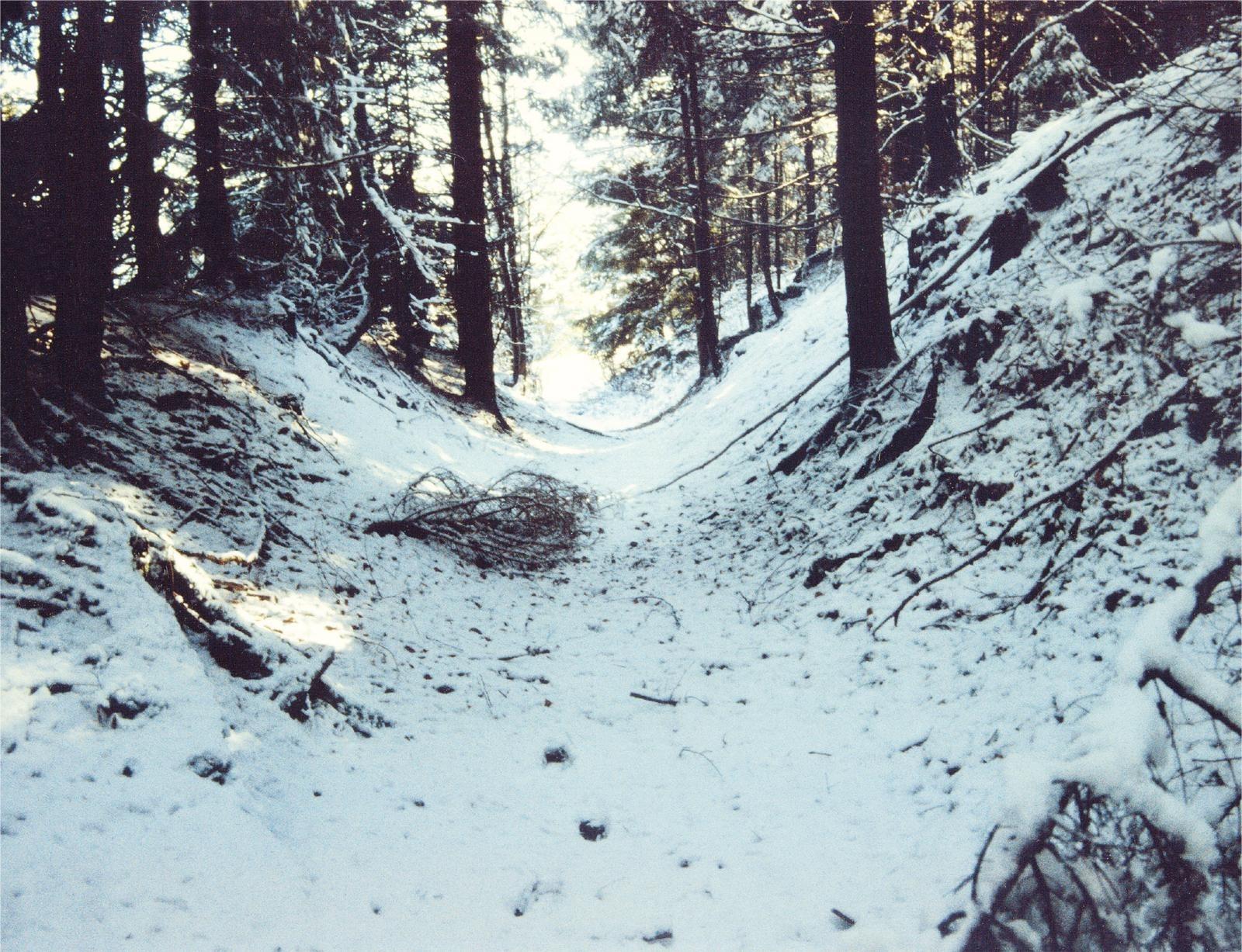 Römerweg im Winter
