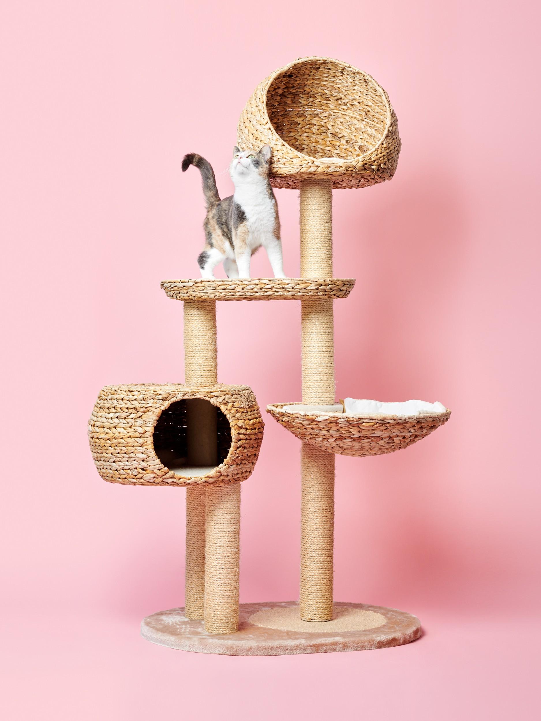 Katze Kratzbaum Kuschelplätze