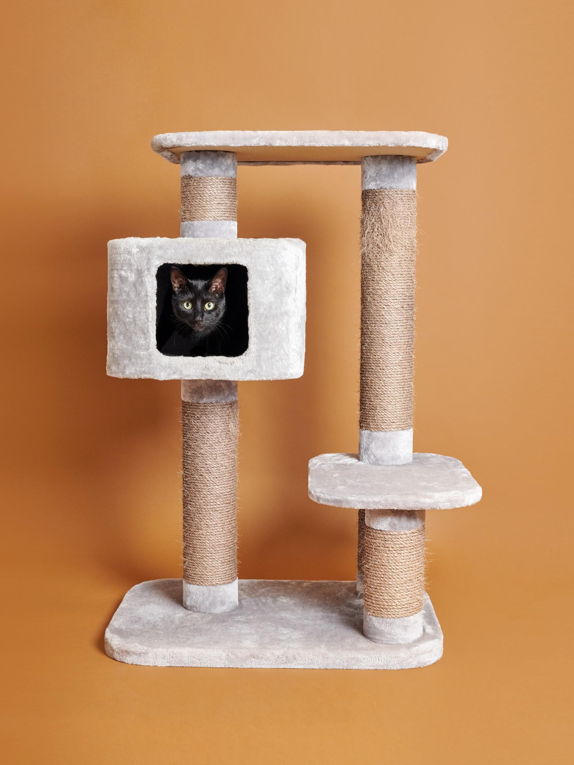 Katze Kratzbaum Wohnzimmer-Skulpturen