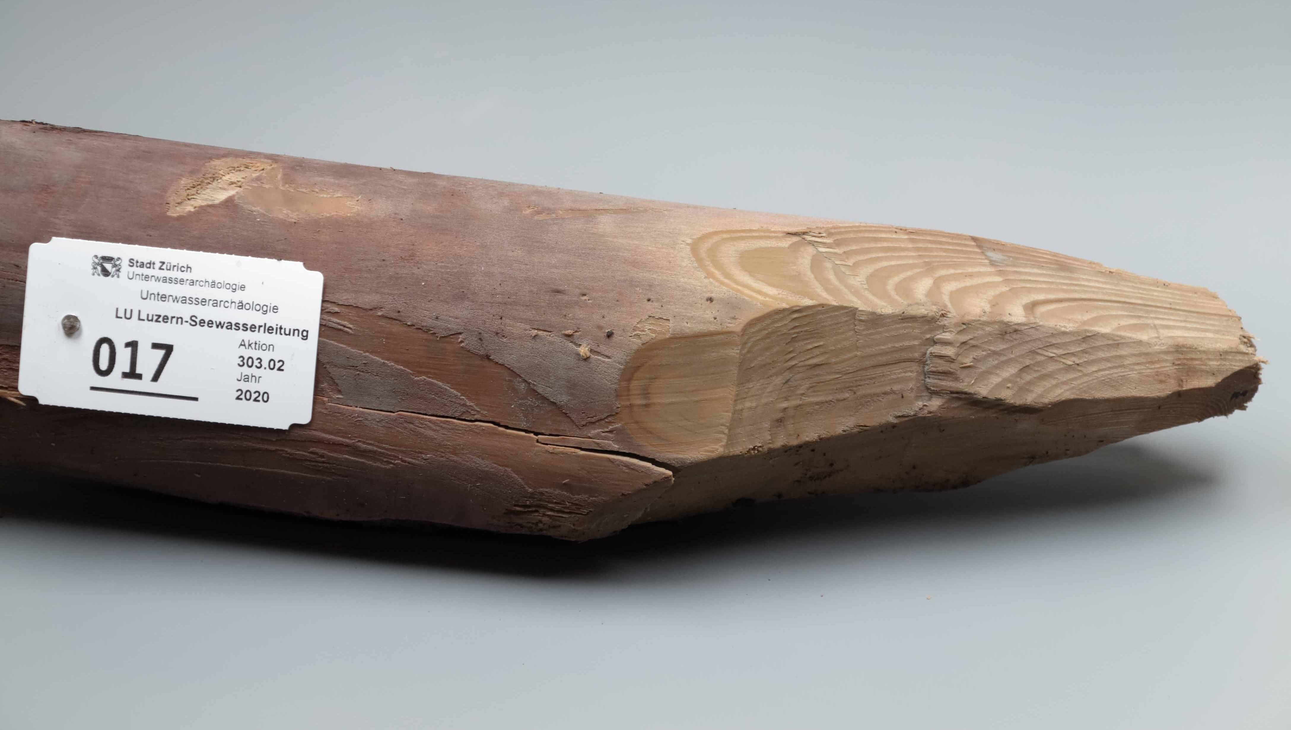 Prähistorischer Holzpfahl