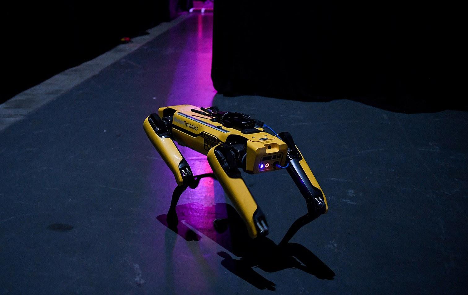 Spot-Roboter von Boston Dynamics