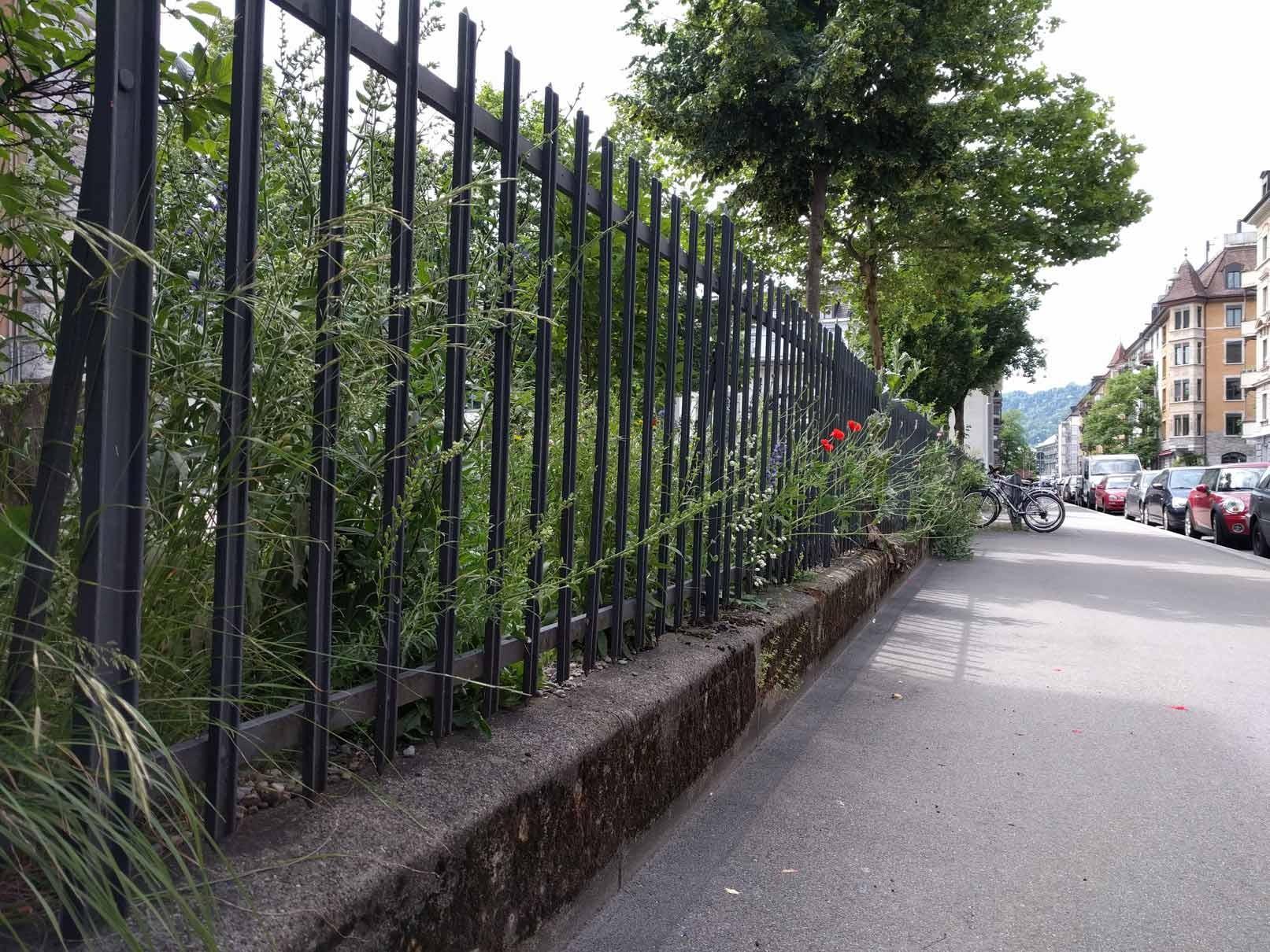 Zäune als Barriere für Igel