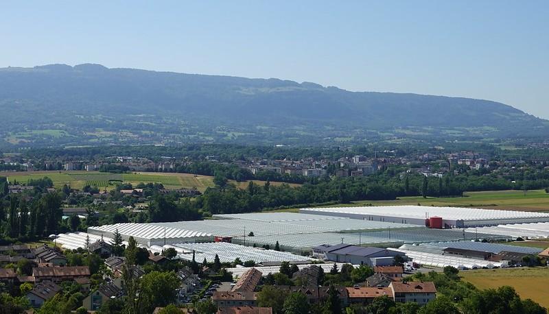 Blick auf die Gemeinde Bernex GE