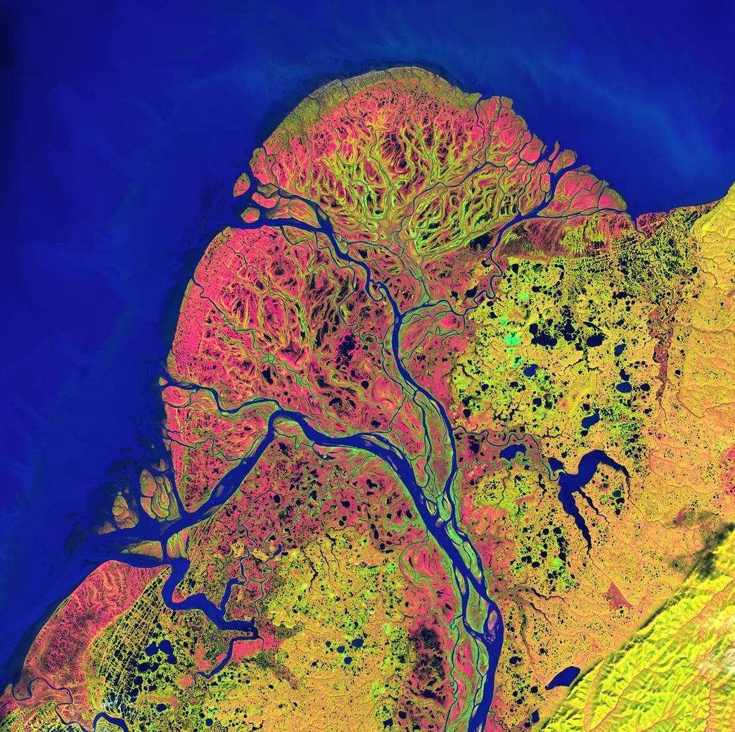 Falschfarbenbild des Yukon-Delta von 2002