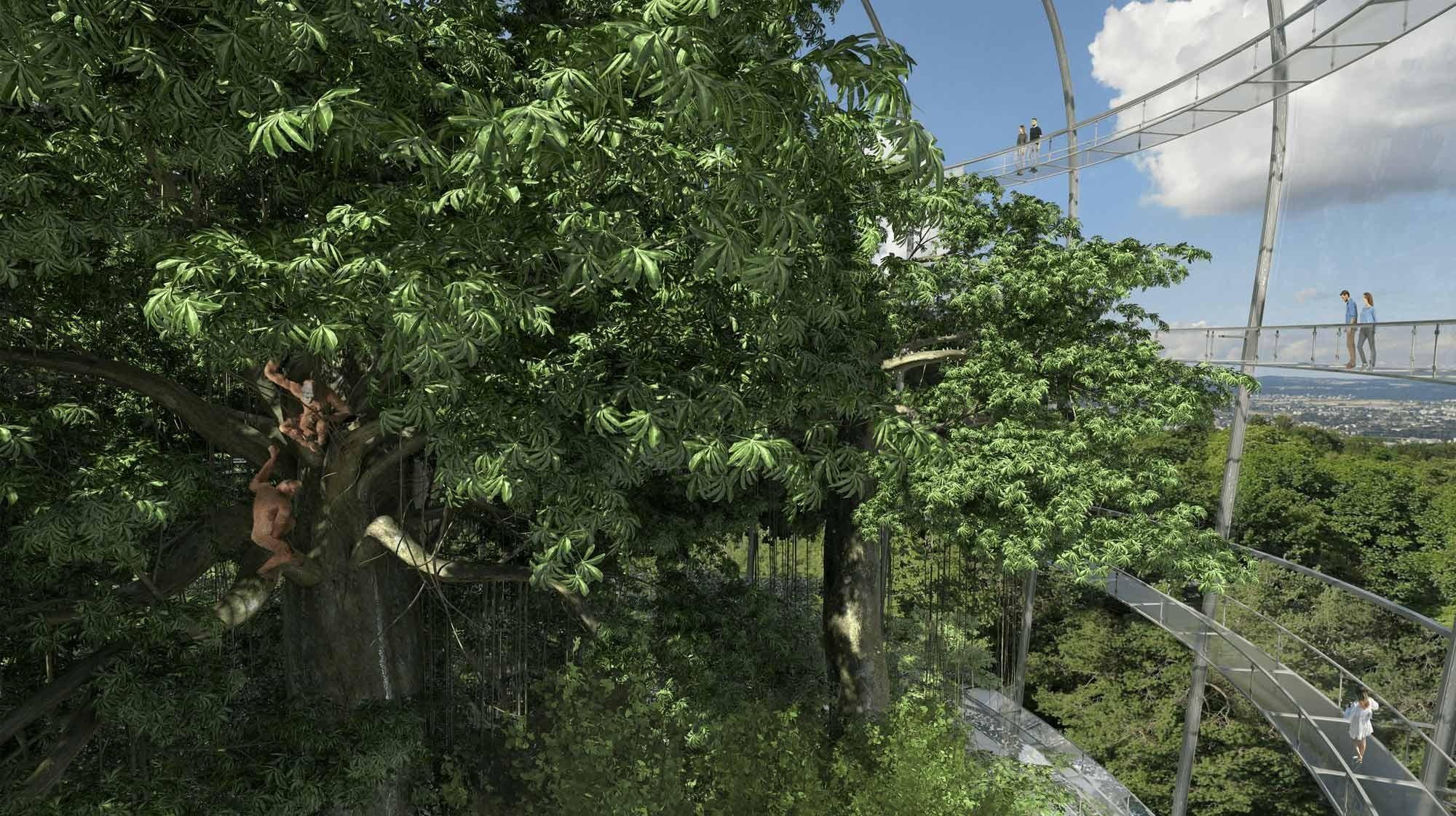Visualisierung Projekt Sumatra Regenwald Zoo Zürich