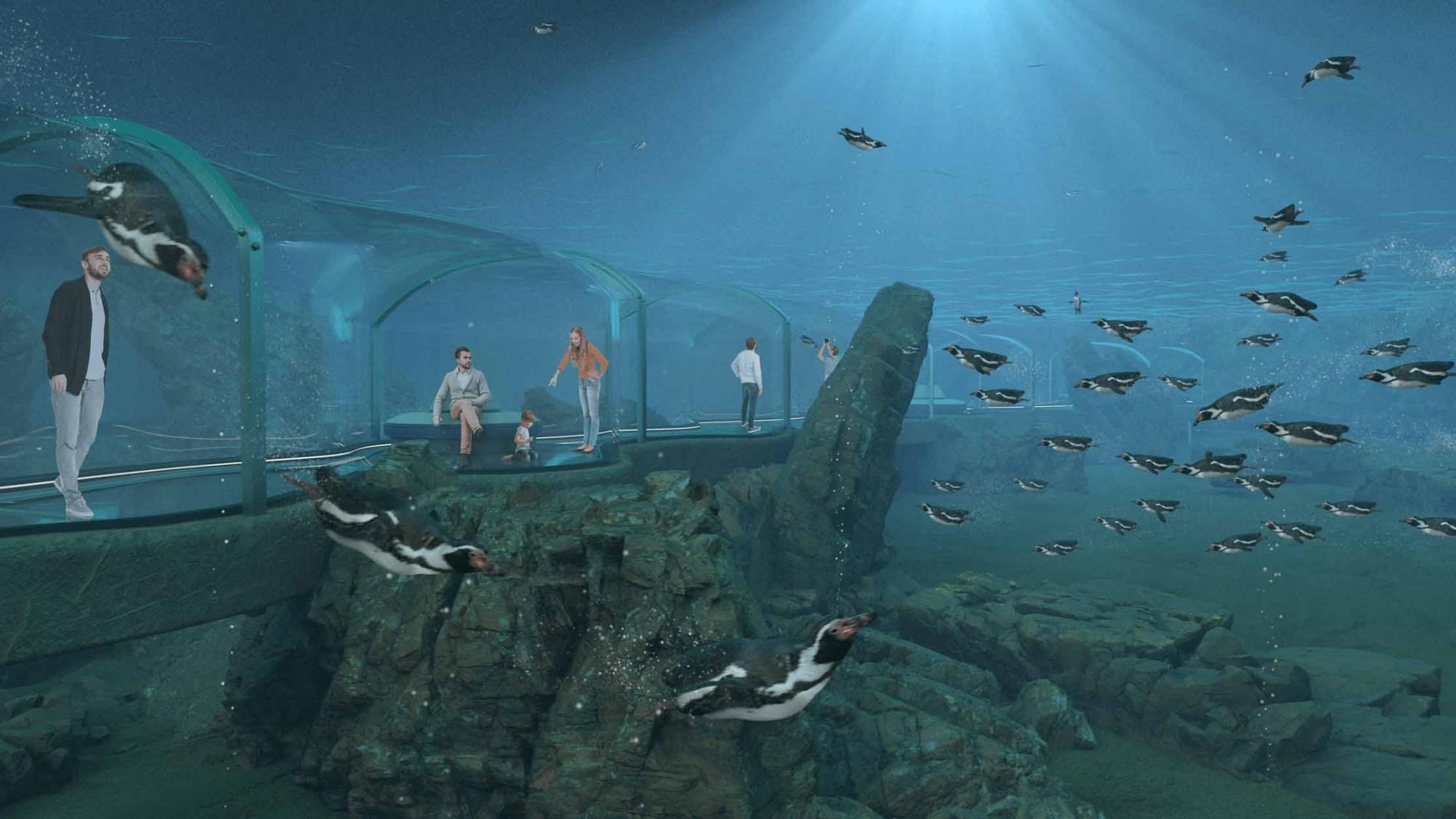Visualisierung Projekt Projekt Meeresküste Zoo Zürich