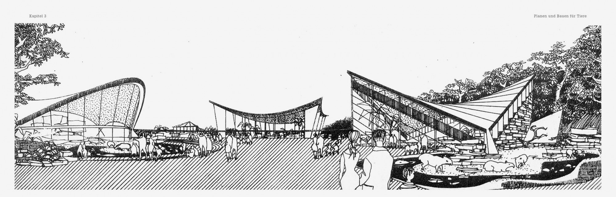 Zooarchitektur 4