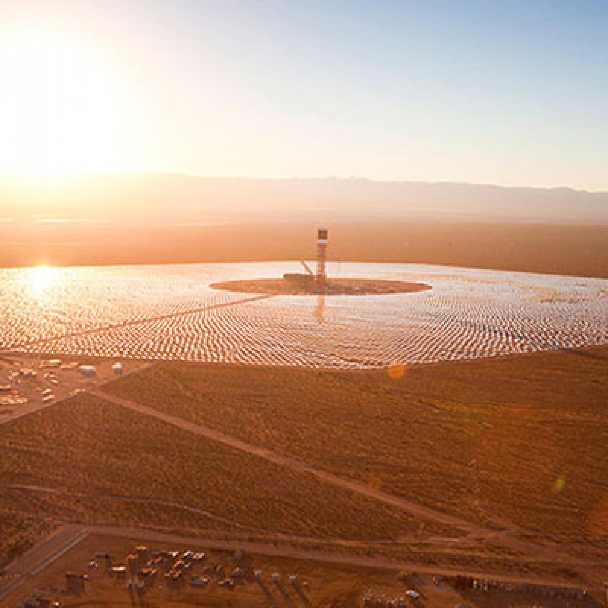 Für Vögel wirken die Heliostaten der Solarfarm Ivanpah wie ein See. Ein gefährlicher Irrtum. (Bild: zvg)