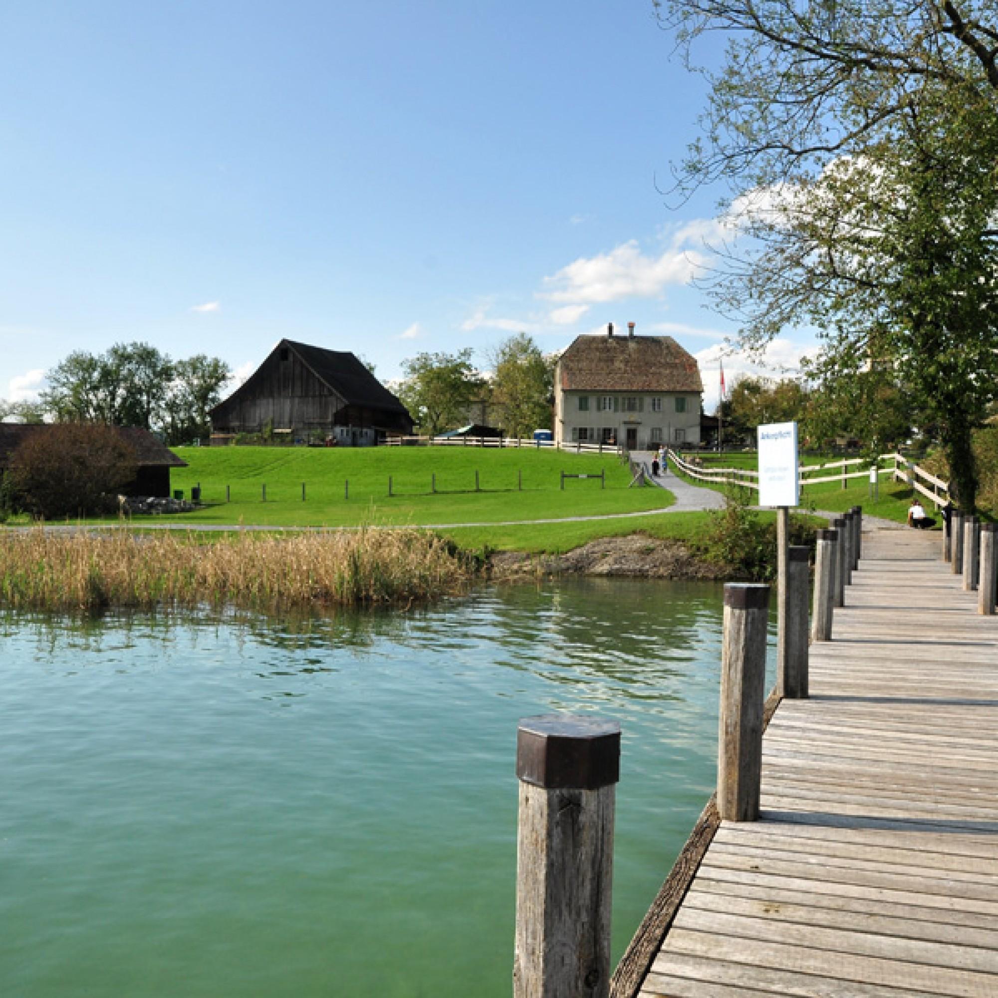 Die Ufenau-Bauten im Jahr 2010: Haus zu den zwei Raben (rechts), Scheune und Schuppen sowie das inzwischen erneuerte Bootshaus (vorne) (wikimedia.org, Roland zh, CC)