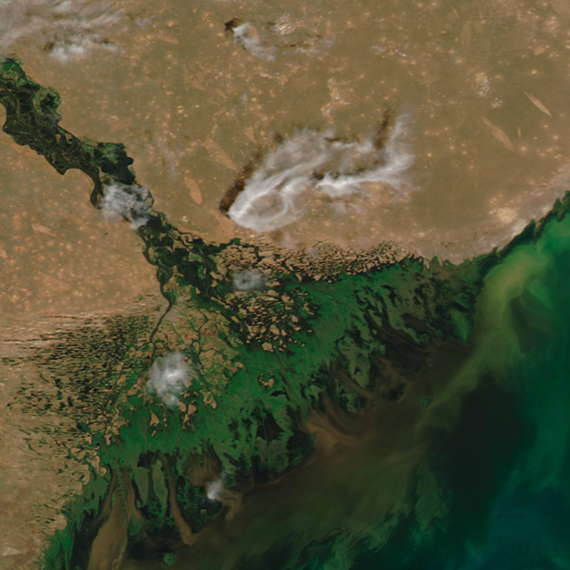 Blau wie das Meer? Auch an der Kaspischen See ist es eher grün, zumindest dort wo die Wolga ins Meer mündet. (Nasa)