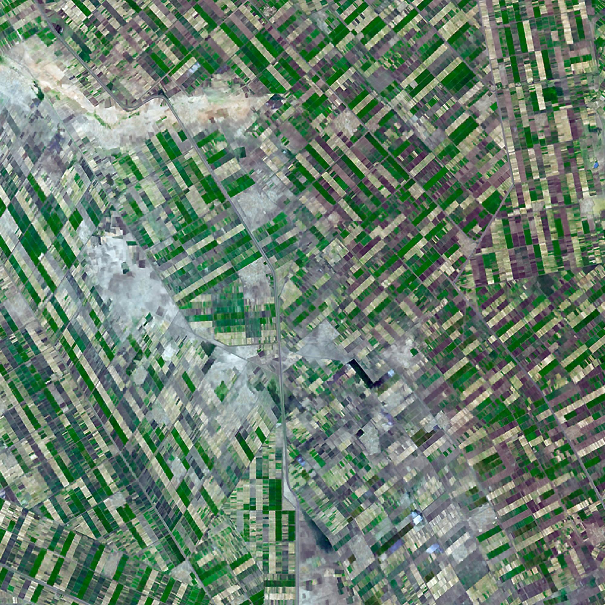Was wie ein Riesenteppich aussieht, sind Felder im Süden von  Khartoum, im Sudan. (Nasa)