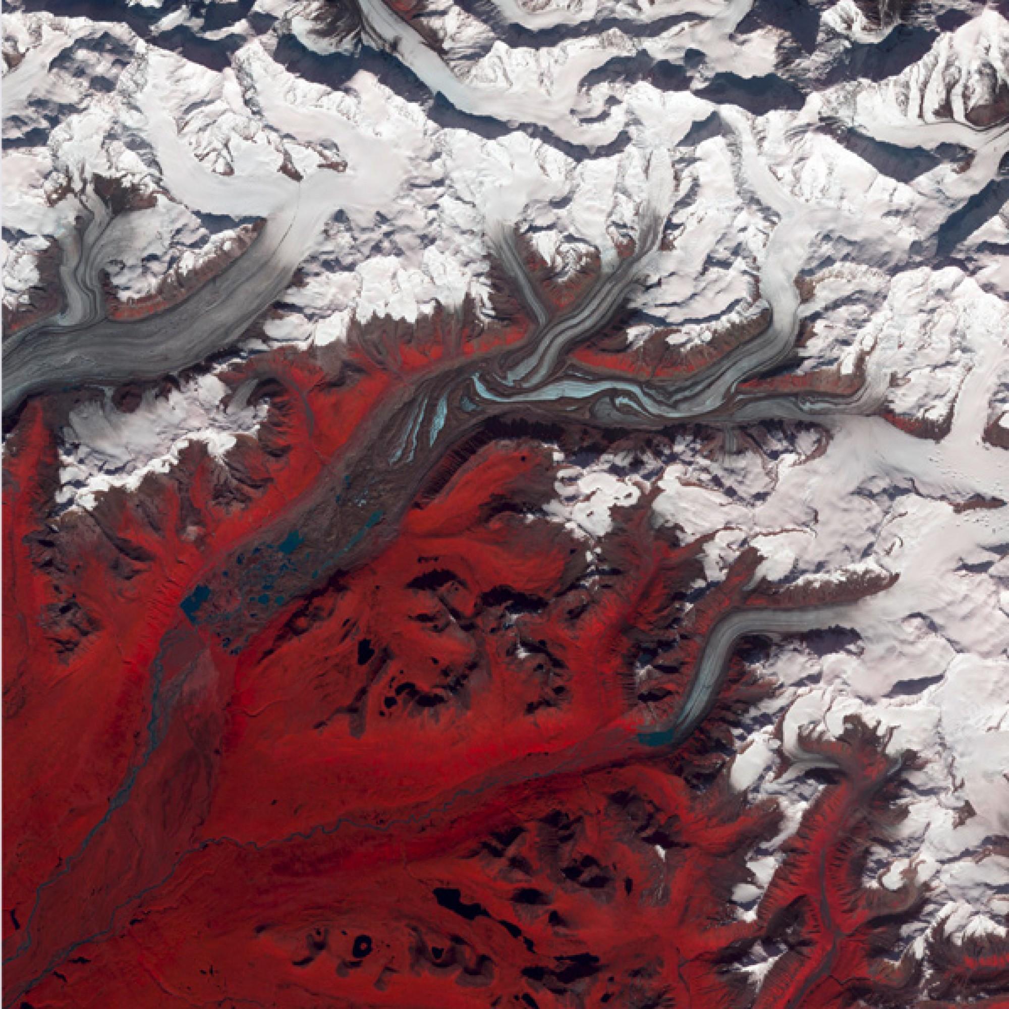 Susitna-Gletscher in Alaska. Die Farben wurden verfremdet: Die Gebiete, in denen es Vegetation gibt, sind rot.