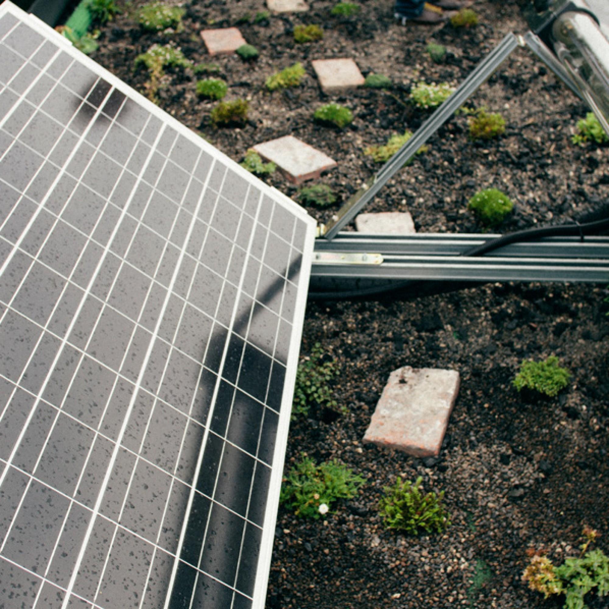 Auf dem Dach der Energieautarken Version befinden ich Solarpanels und eine Pflanzenkläranlage.  (Wohnwagon/PD)