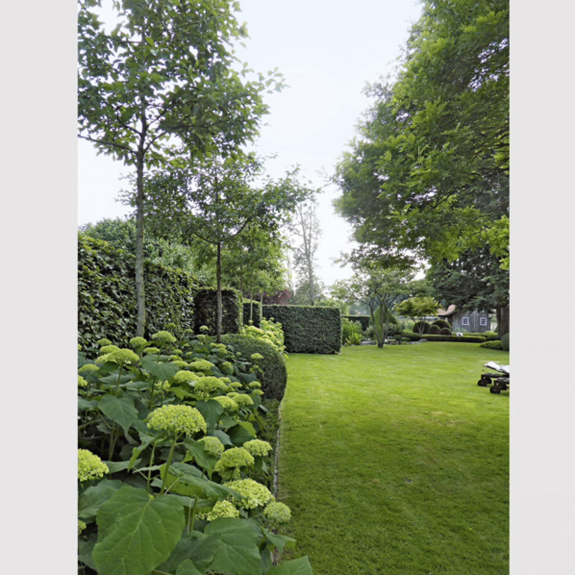 Sonderpreis: Garten in Bad Zwischenahn, Koch + Koch Gartenarchitekten mit Carsten Wagge. (Callwey Verlag)