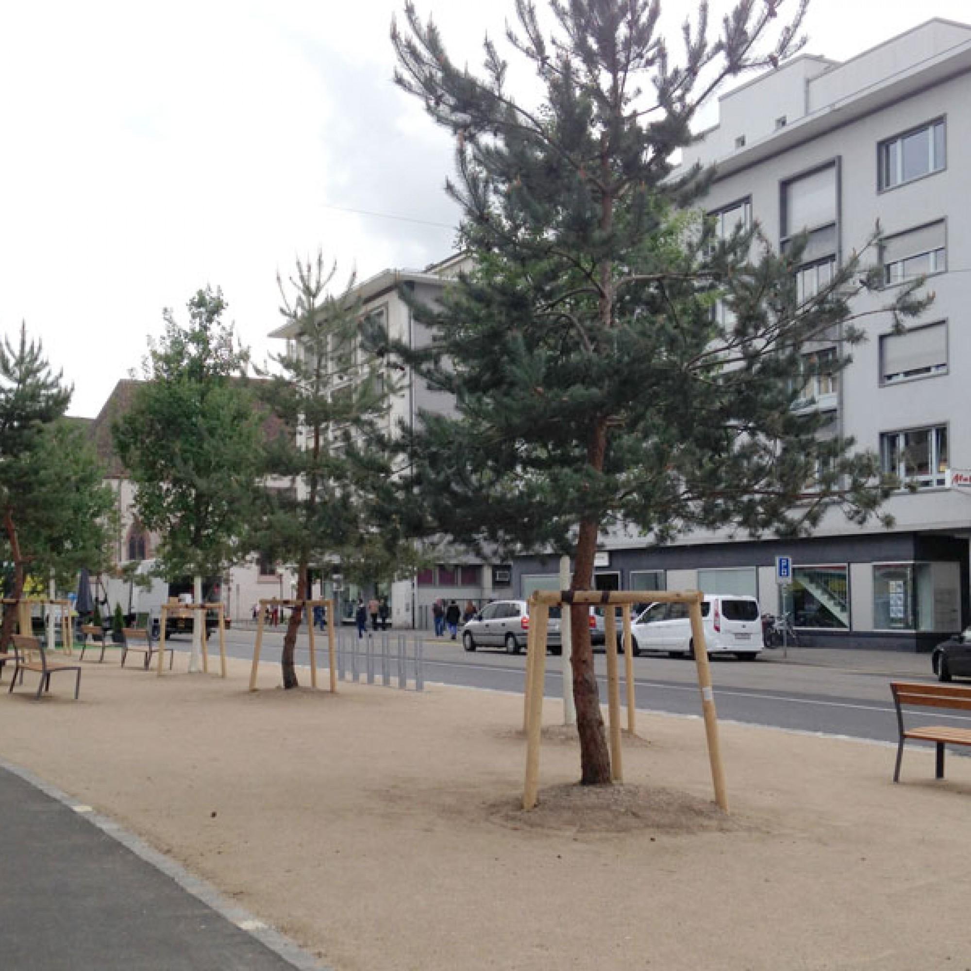 Die Stadtgärtnerei pflanzte sieben Bäume und stattete den neuen Freiraum mit Bänken aus (zvg)