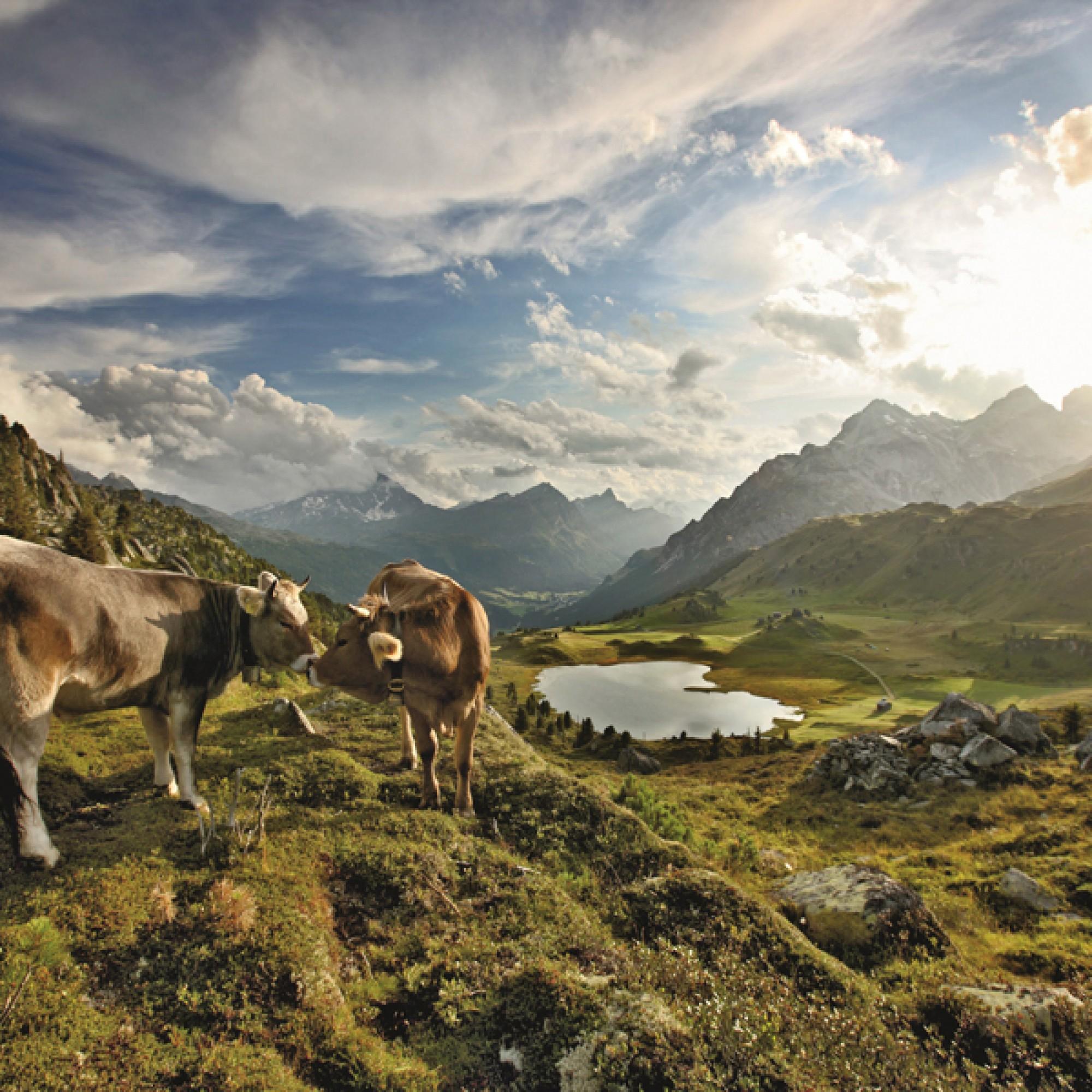 Idyll im Naturpark Beverin (Bild: Schweiz Tourismus, Bafu)