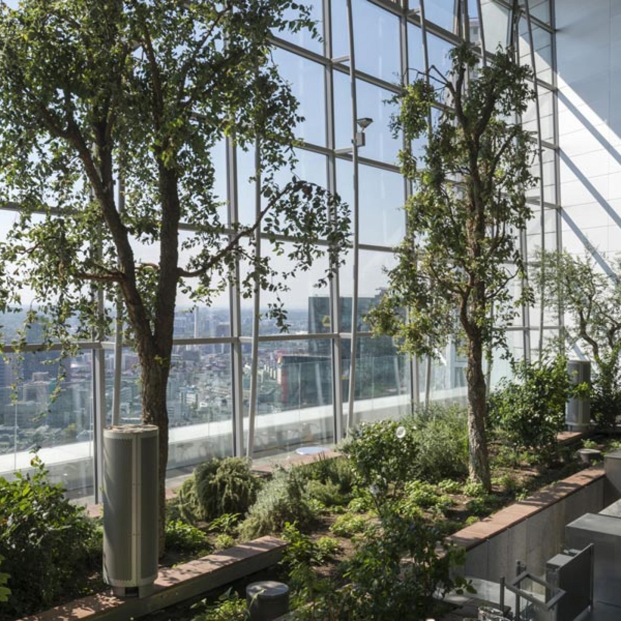 Einer der Skygärten, die sich thematisch den verschiedenen Vegetationszonen widmen.