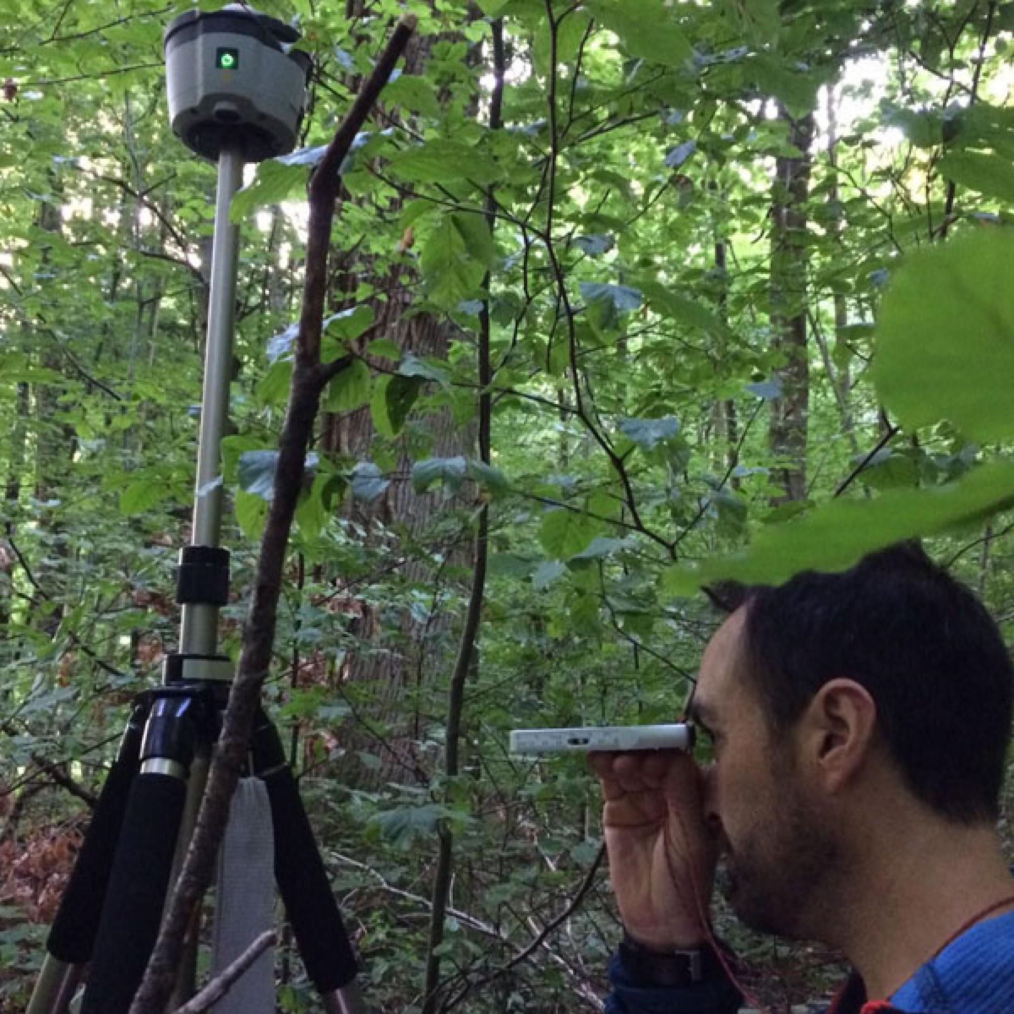 Im Kanton Basel-Stadt werden im öffentlichen und privaten Wald über 400 Stichprobenflächen vermessen (zvg)