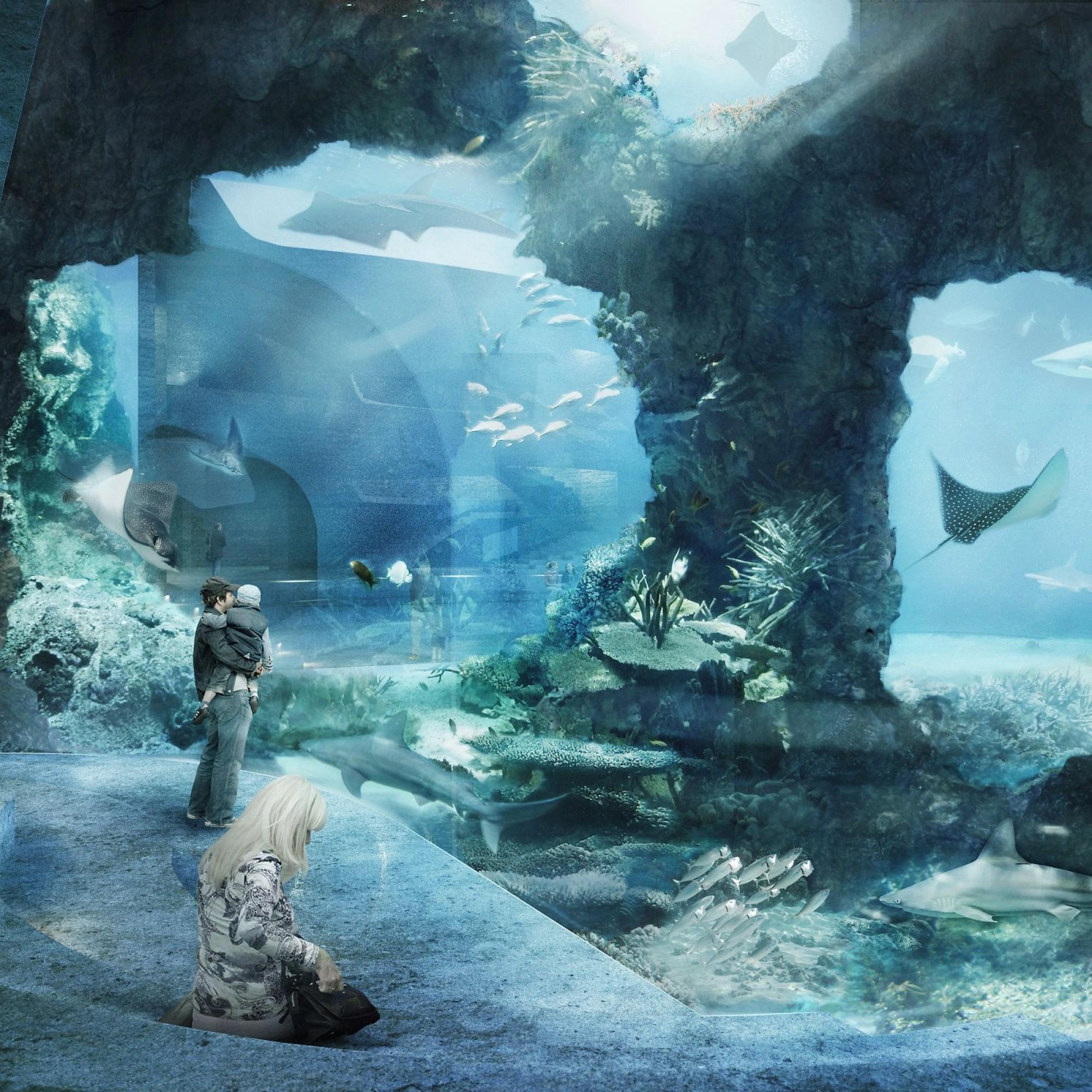 Das Ozeanium-Projekt wurde von Boltshauser Architekten entworfen