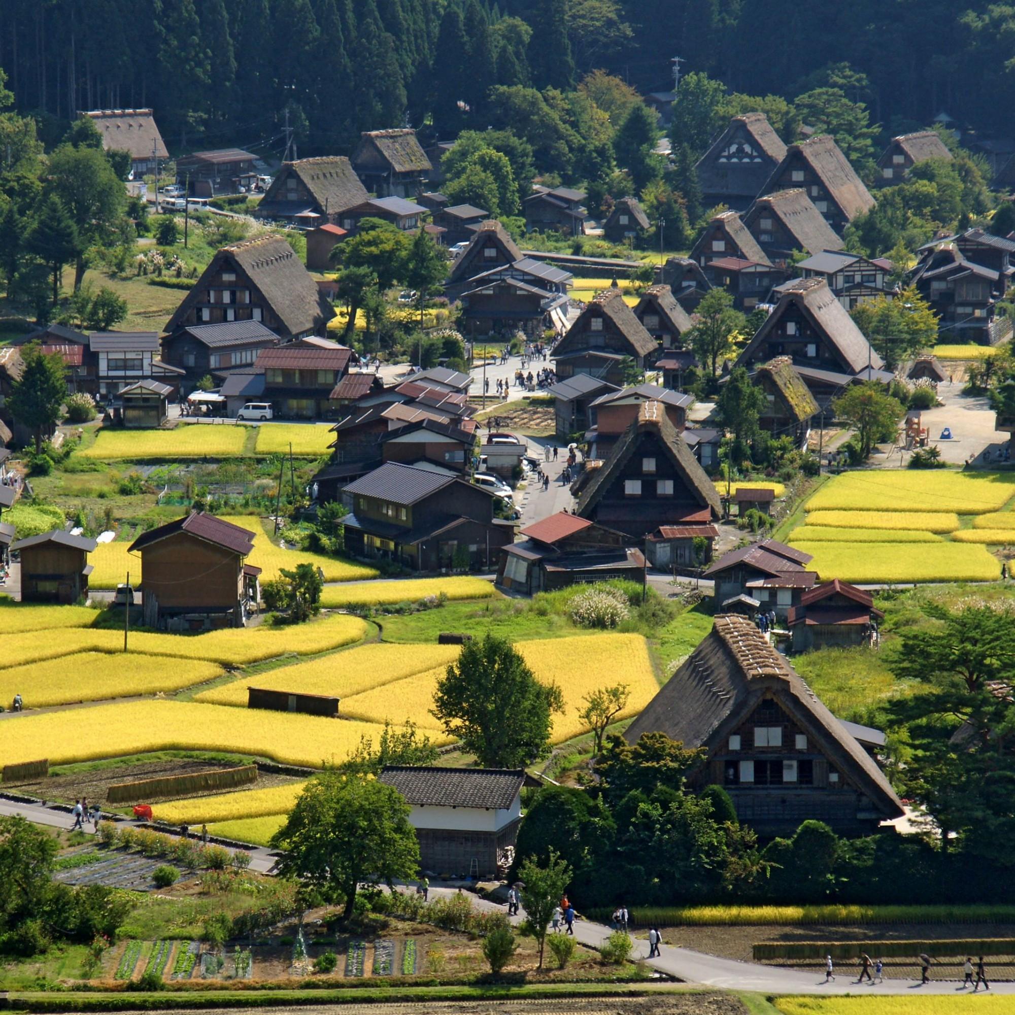 Zwischen den alten Bauernhäusern wird Buchweizen und Hirse angebaut.