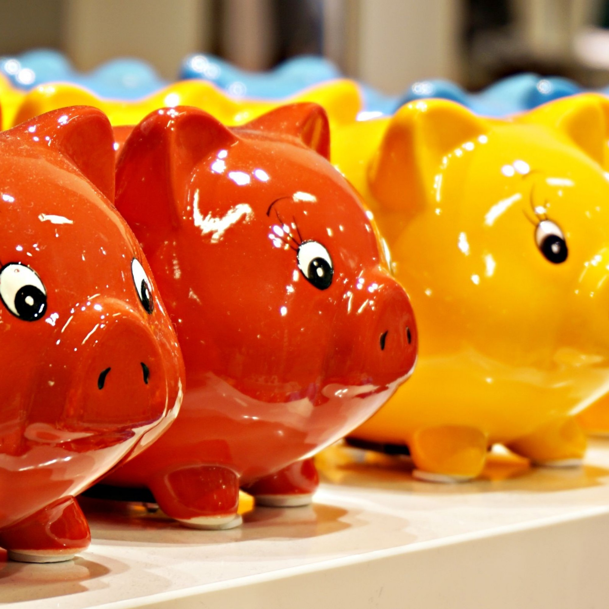 Sparschweine, Symbolbild