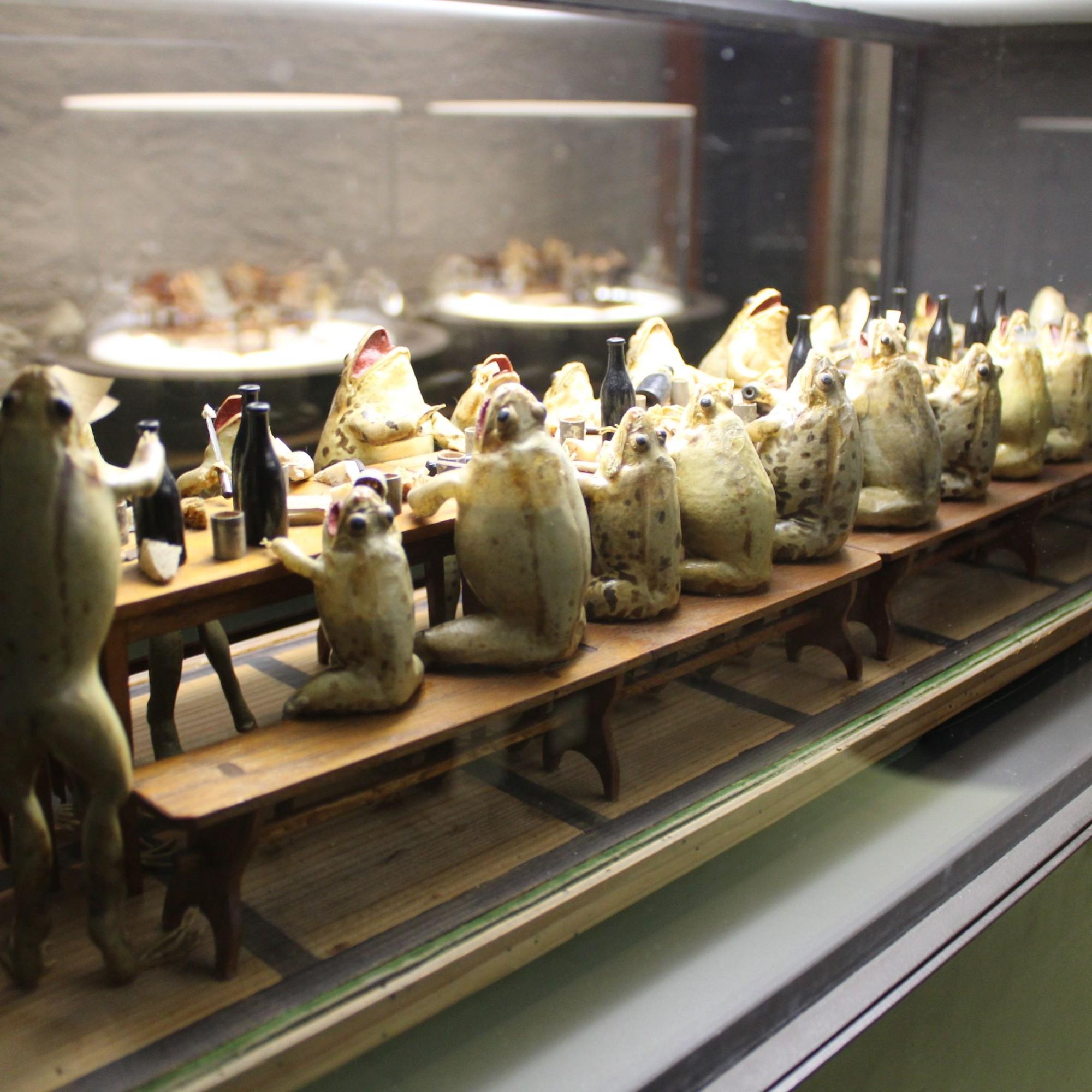 Im kleinen Museum gibt es sogar eine ganze Tafel mit den ulkigen Fröschen.