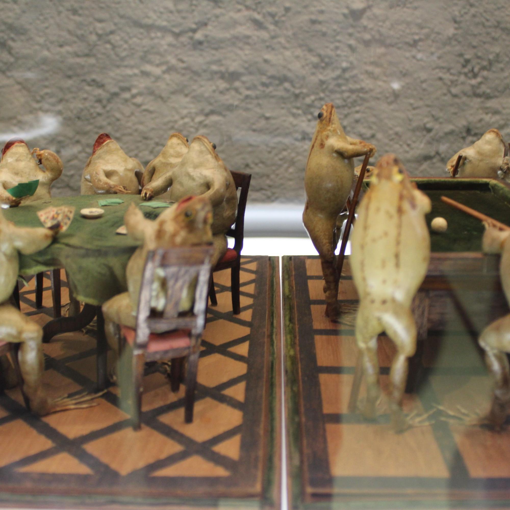 Daneben gibt es aber auch zahlreiche Varianten von Gesellschafts-Szenen, in denen die Frösche Pokern...
