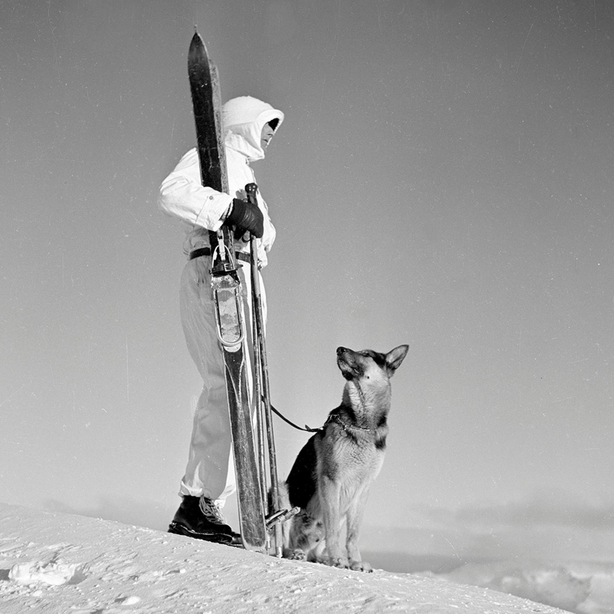 Gebirgsdienst mit Lawinenhund, Davos, 1939-1945.
