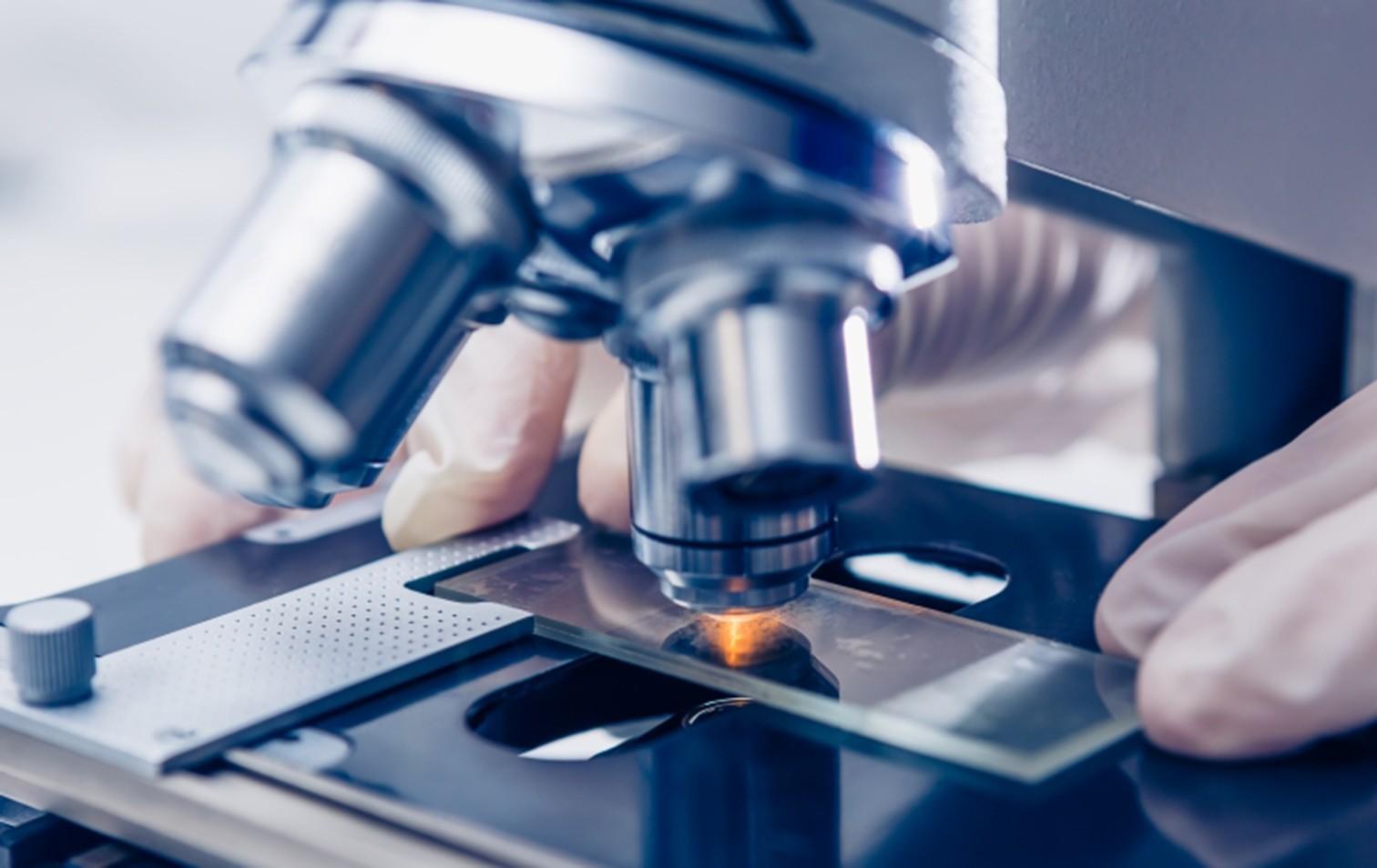 Ein europäisches Forschungsprojekt klärt mögliche Risiken von Graphen ab.