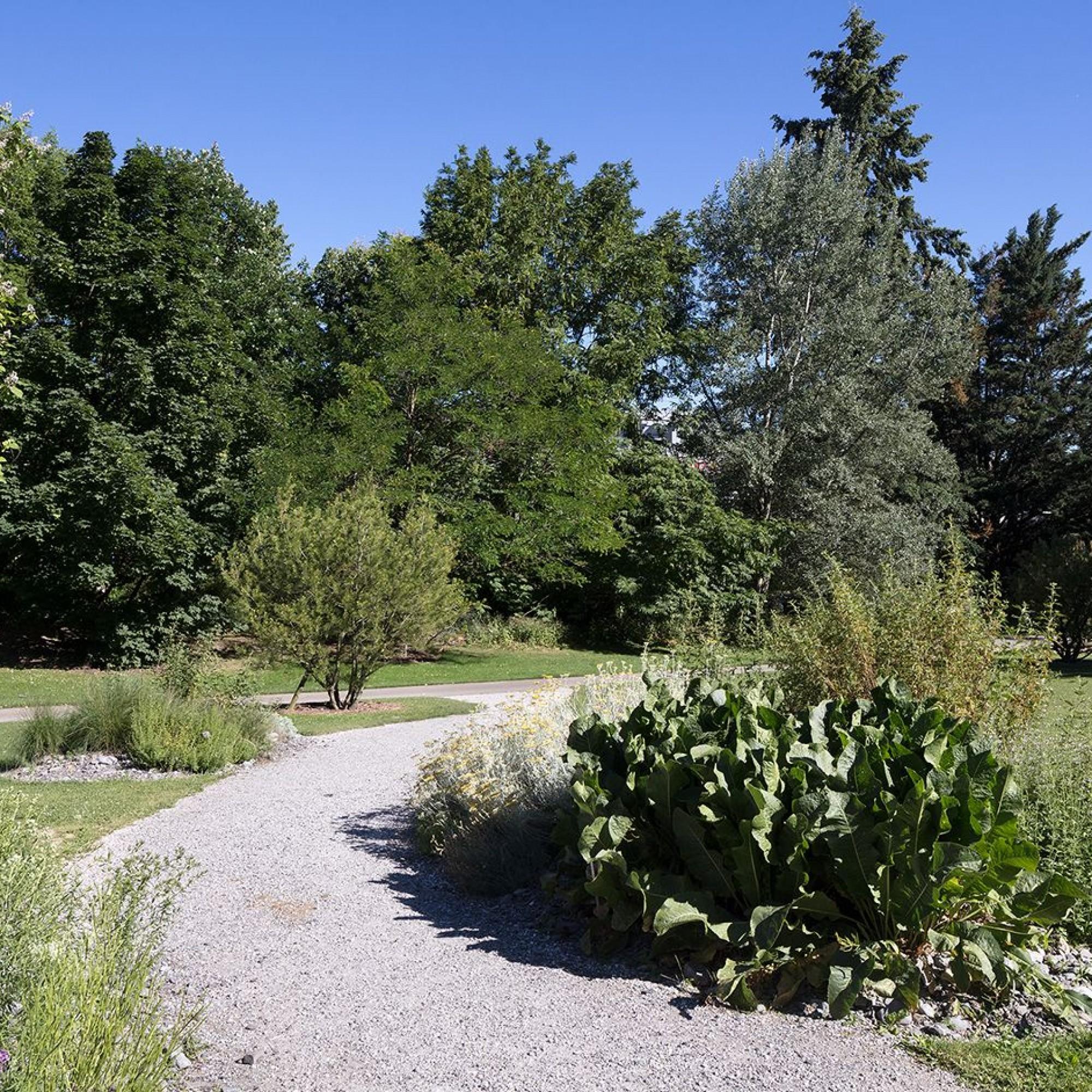 Jardin botanique alpin