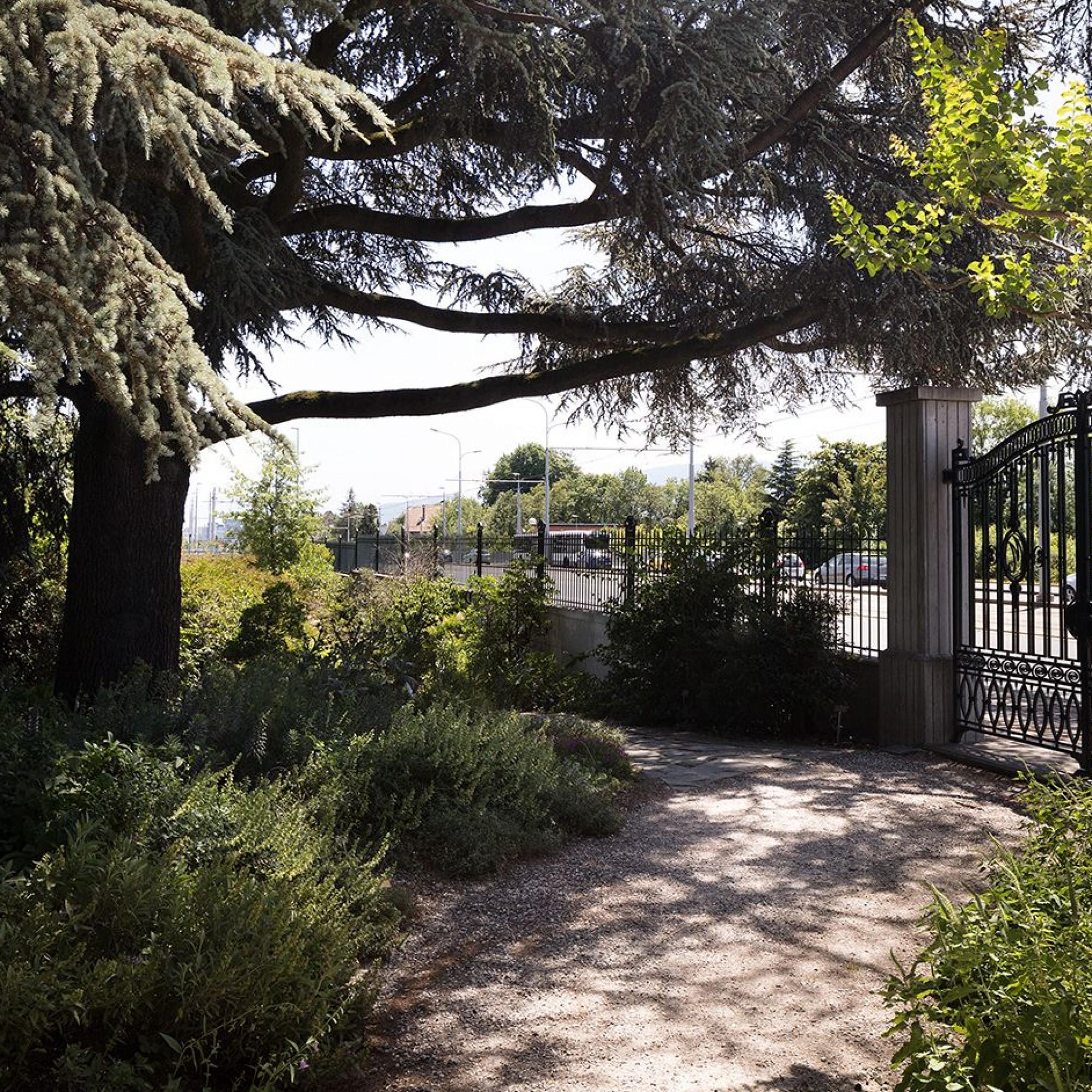 Jardin botanique alpin.