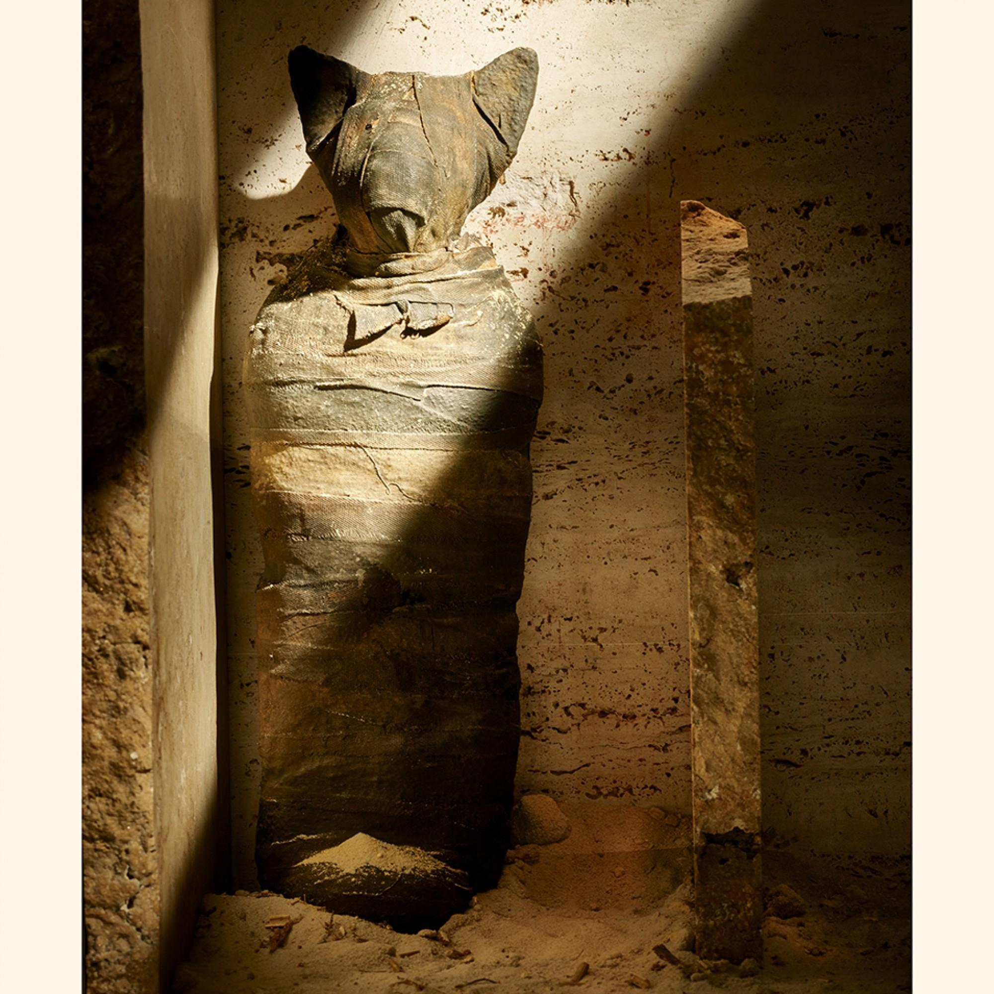 Mumienbraun, auch als Mumia bekannt, ist genau das, was der Name sagt – es besteht aus gemahlenen Mumien. Bis ins 18.Jahrhundert verschrieben die Ärzte Mumia als Heilmittel für ein breites Spektrum an Leiden.