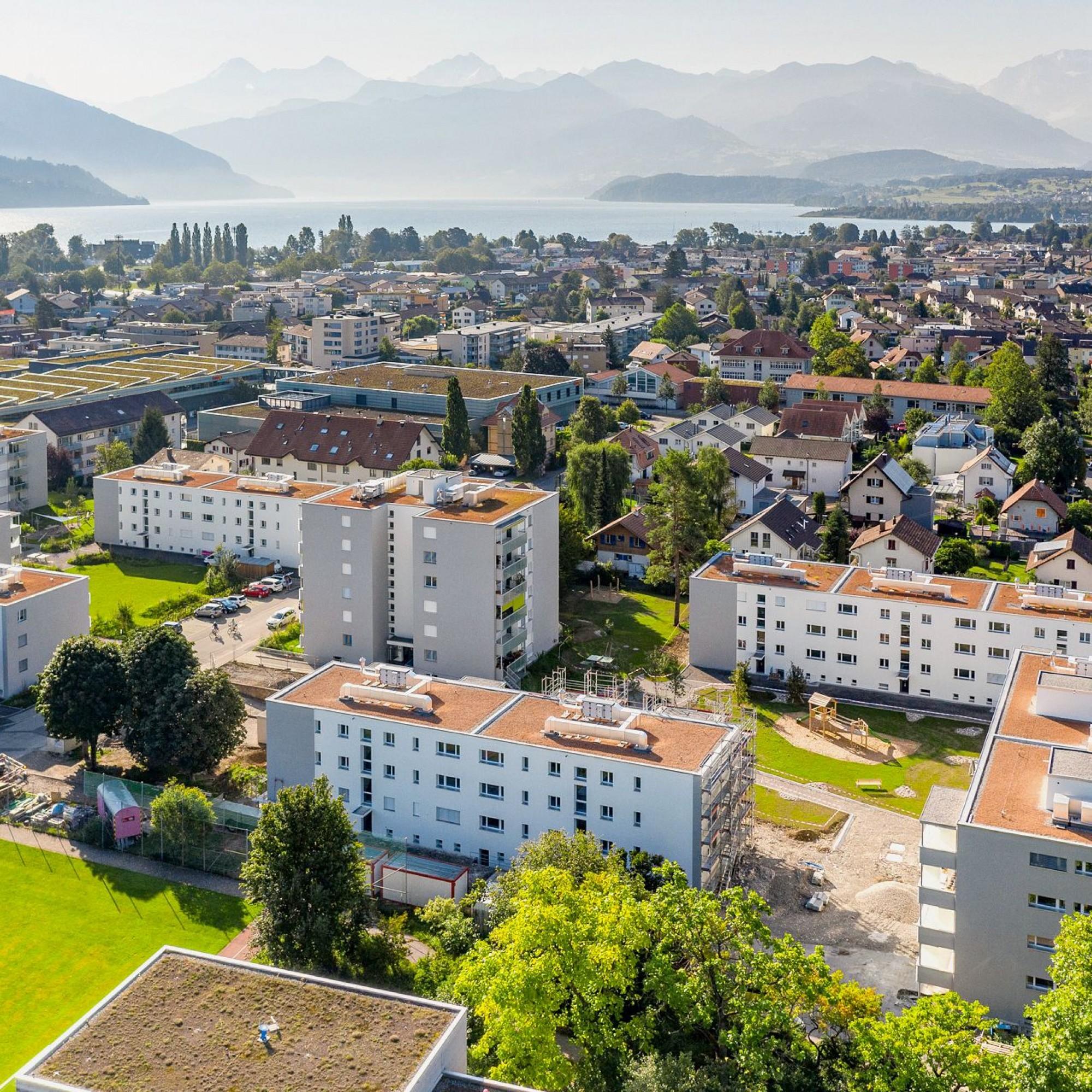 Wohnsiedlung am Meisenweg in Thun, Bern