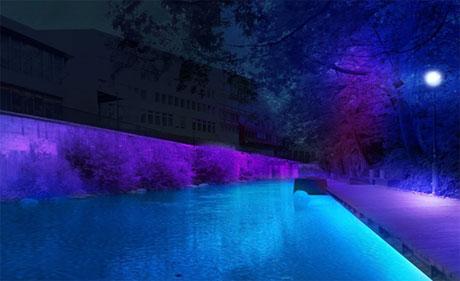 Mystisches Violett am Wasser...