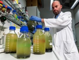 Covid-19-Analyse am Helmholtz-Zentrum für Umweltforschung