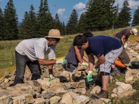 Freiwilligen-Einsatz von Naturkultur