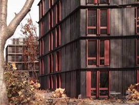 Visualisierung Wohnsiedlung Rotbuch VOLIÈRE Holzfassade