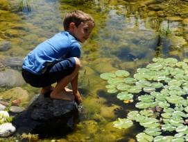 Kind an einem Teich