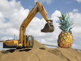 Bagger mit Ananas